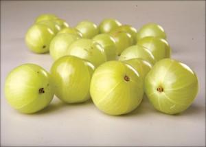 amala fruit
