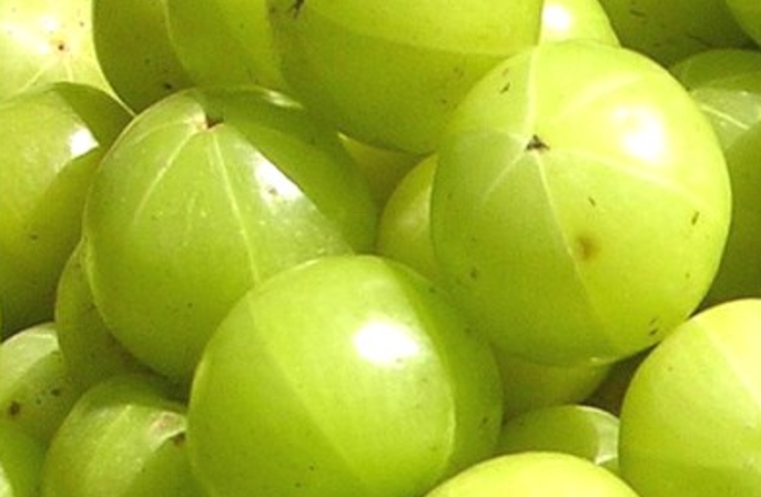 The Benefits of Ayurvedic Medicine: Amla