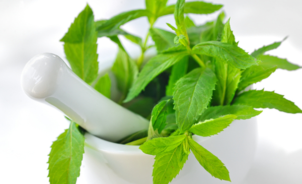 The Benefits of Peppermint_peppermint leaves in mortar with pestle