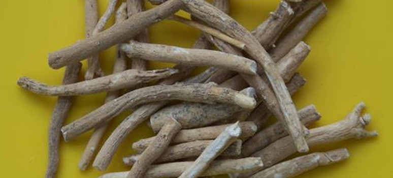 The Benefits of Ayurvedic Medicine: Ashwagandha