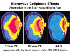 cellphone brain by age hh
