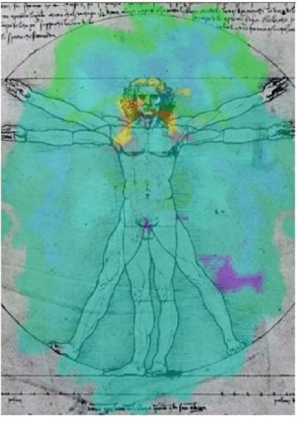 The Energy of Disease and Health_vitruvian man energy