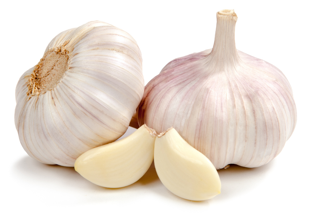 The History of Garlic, for Health and Healing