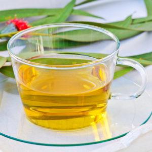 Natural Pain Relief: Herbs_eucalyptus tea