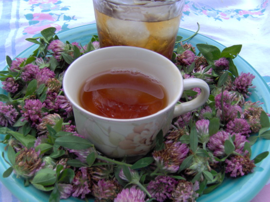 7 Best Blood Cleansing Herbs - Holistic Health & Living