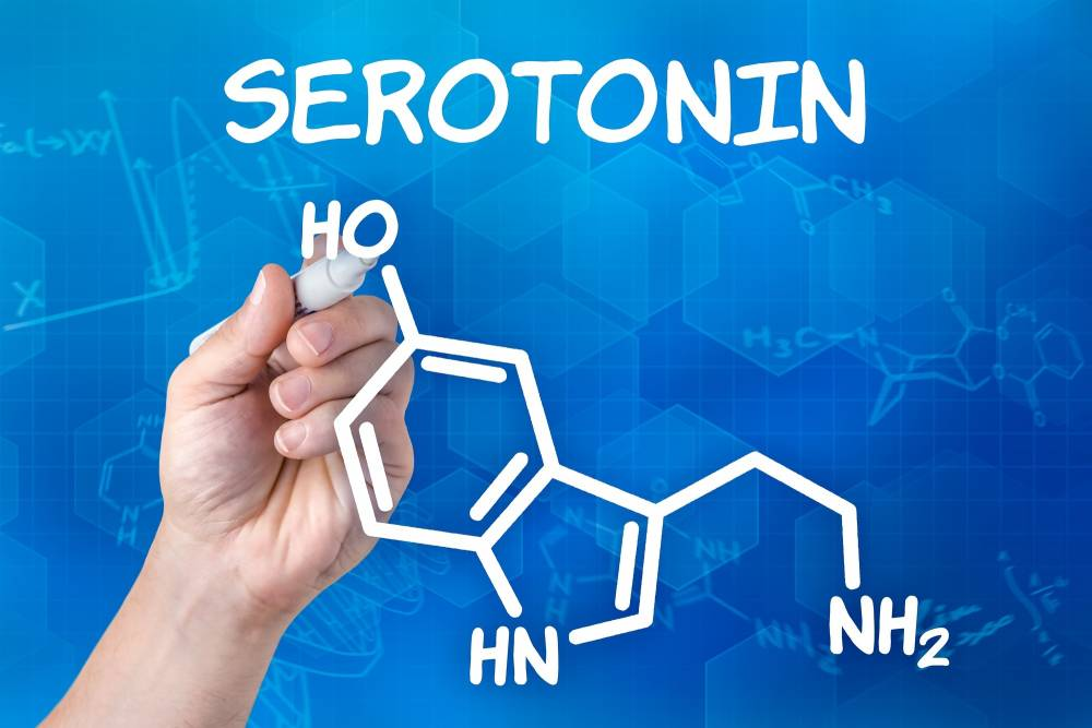Whole Foods That Boost Serotonin