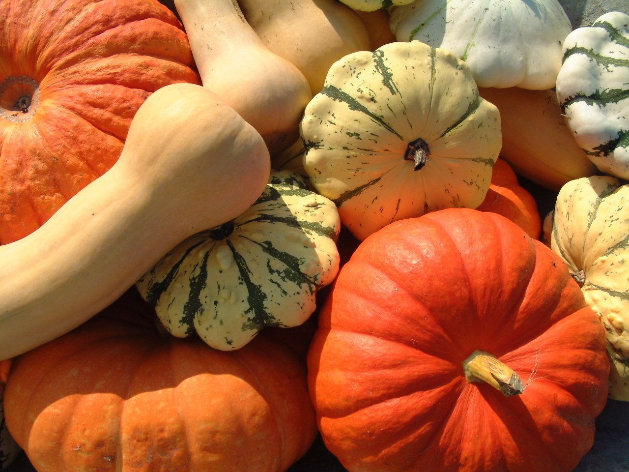 Whole Foods That Boost Serotonin winter squash