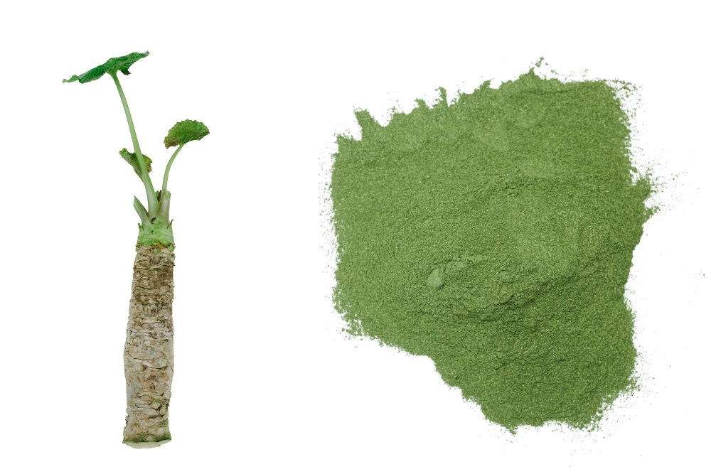 /home/acraig/Desktop/The Incredible Antioxidant Properties of Wasabi_Wasabi powder and root