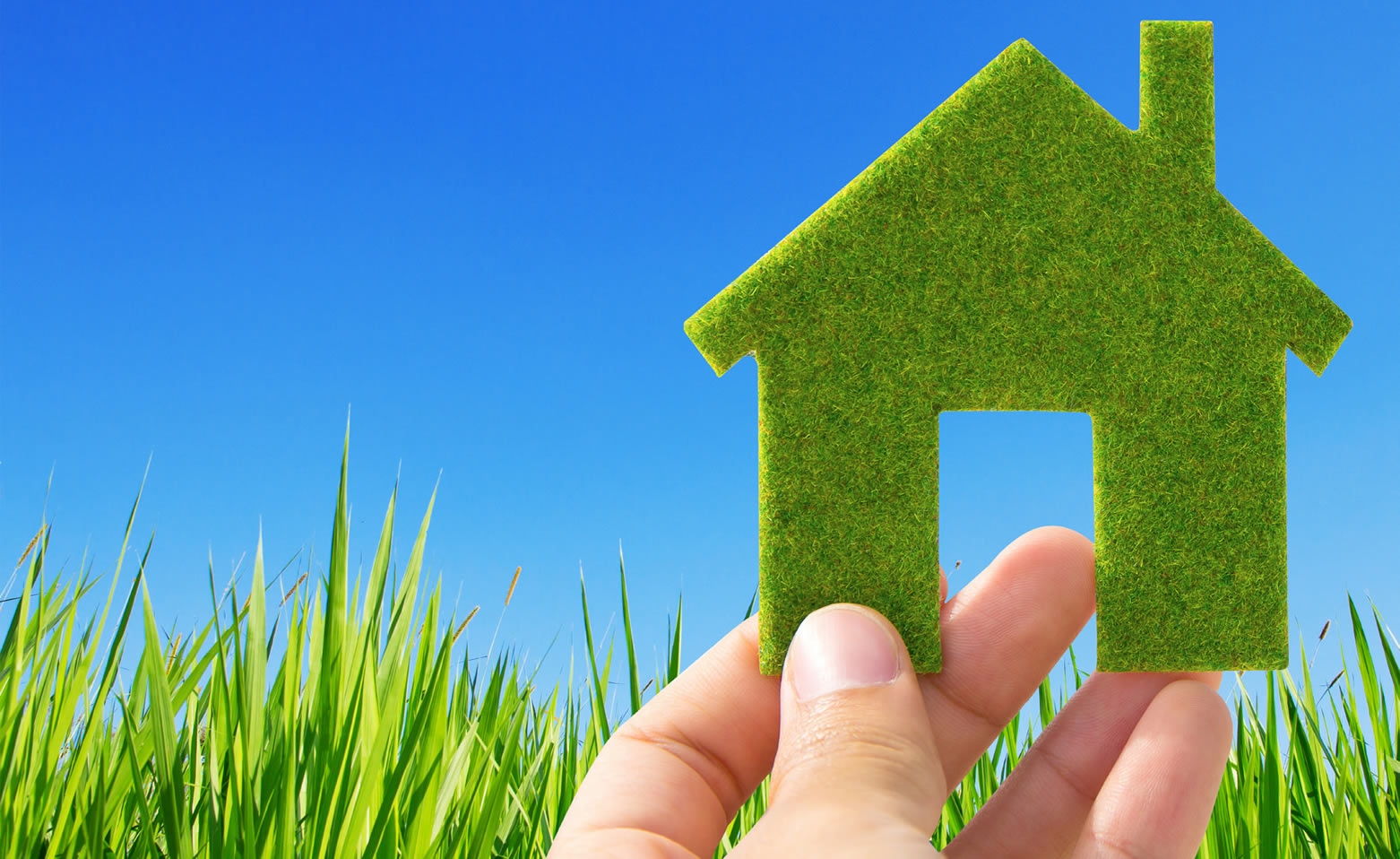 Living Green: Committing to a Healthy and Restful Home Environment