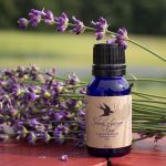 Top 10 Dry Skin Oils_lavender essential oil