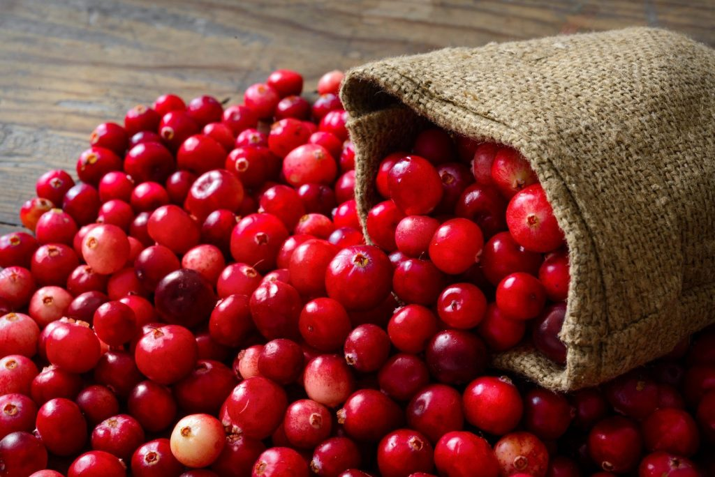 Cranberries Benefits for Mind and Body_cranberries-in-bag