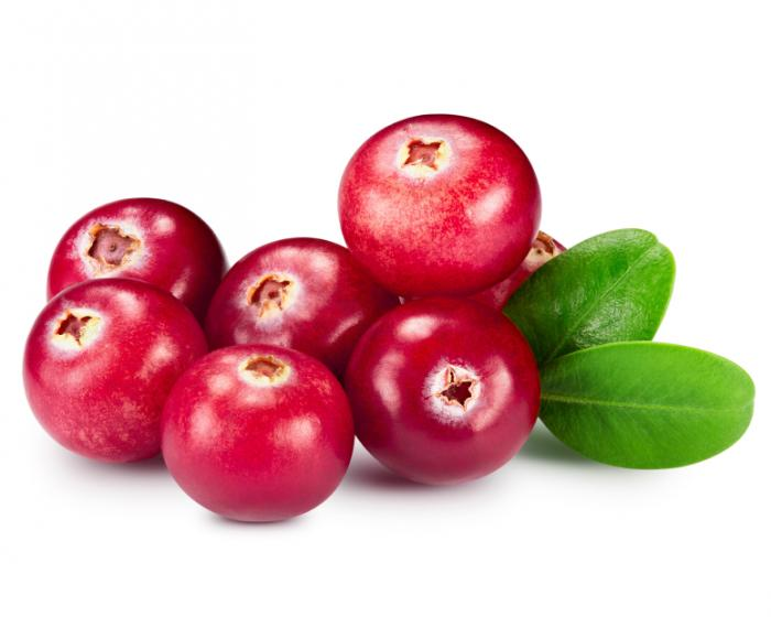 Cranberries - Benefits for Mind and Body_cranberries