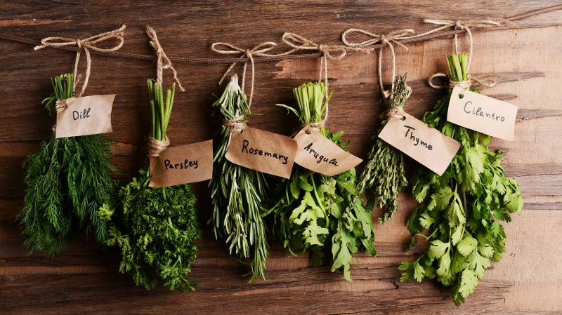 Herbs 101 - How to Choose and Use Them Safely_green herbs