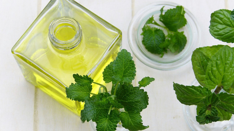Peppermint-Oil-Recipes-for-Healthier-Hair_peppermint-oil