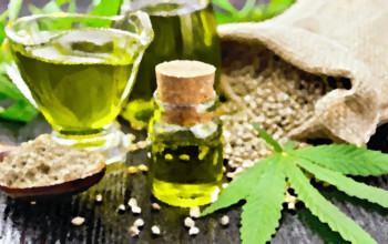 Everything You Need to Know About Hemp Seed Oil_hempseedoil