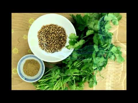 The Health Benefits & Dangers of Chaparral Herb